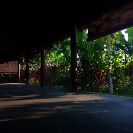 Coconut Yoga: Quiet and Peaceful Shala in the Garden