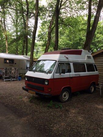 Camping vliegenbos hotel amsterdam paesi bassi prezzi for Alloggi amsterdam consigli