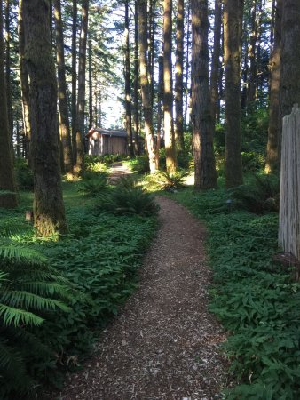 WildSpring Guest Habitat : Quaint little secluded paradise