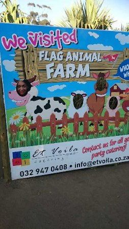 Salt Rock, Südafrika: We visited Flag Animal Farm.Kids ould love this our grandchildren were amazed at all the activit