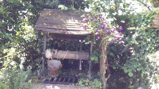 Les Enfants Gat'Thes: puit bucolique au jardin fleuri