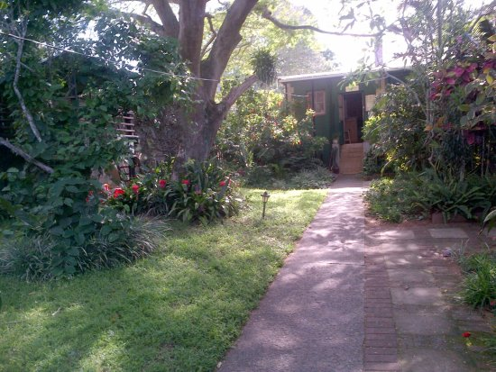 St. Lucia Wilds: Path from carport to reception
