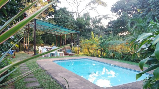 St. Lucia Wilds: Outdoor pool and shaded area with tables and chairs and loungers