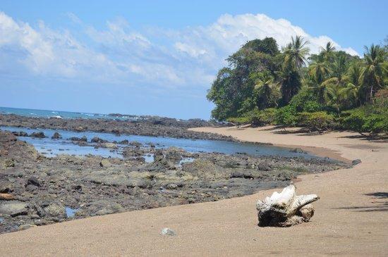 Carate, Costa Rica: Plage du parc
