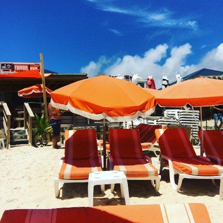 Orange Fever Photo