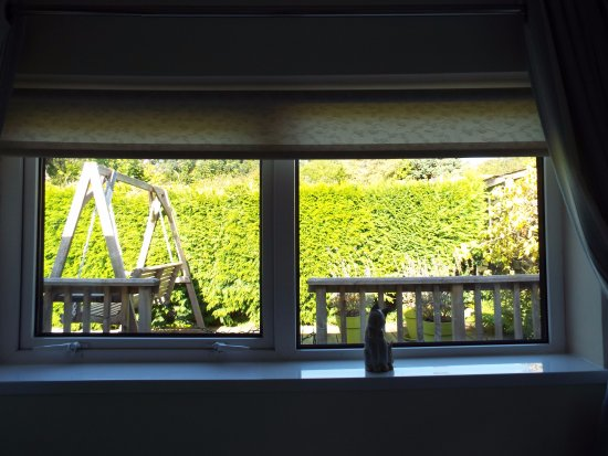 Castaway Guest House & Apartments: View from twin bedroom.