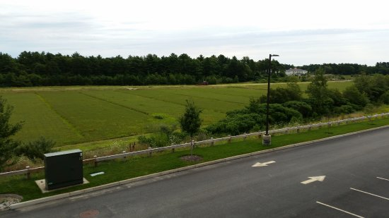 Wareham, Массачусетс: View from the back deck