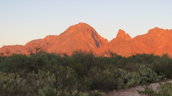 Alpine, TX: Chisos Mountains sunset
