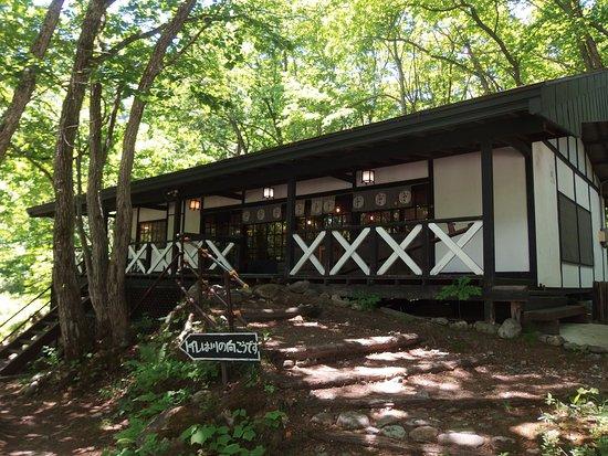 森の中の建物 , Picture of Hinatayama Chaya, Omachi , TripAdvisor