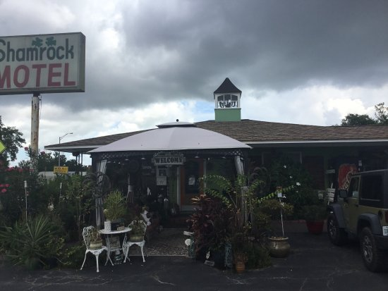 Shamrock Historic Inn: Unique Lodging!  Closest Inn to downtown Historic Ocala.
