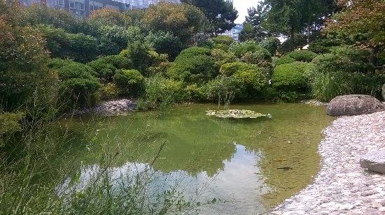 le paisible jardin japonais du havre - Jardin Japonais Le Havre