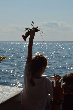 Kennebunkport, ME: Throwing the lobster back, the kids were happily involved.