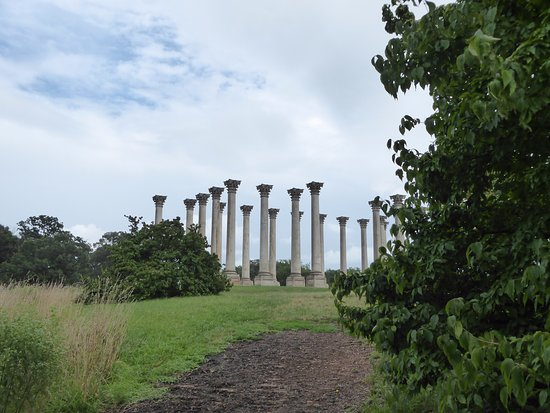 U.S. National Arboretum: Columns from the Capitol