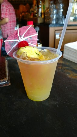Disney's Polynesian Village Resort: Tropical Macaw