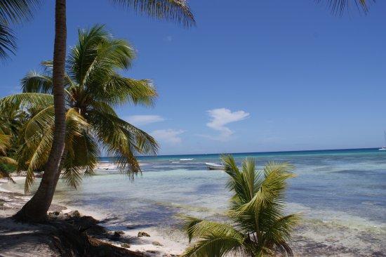 Dreams La Romana Resort & Spa: Isla Saona