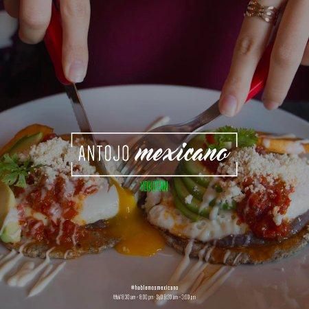 Yokot An San Pedro Garza Garcia Restaurant Reviews