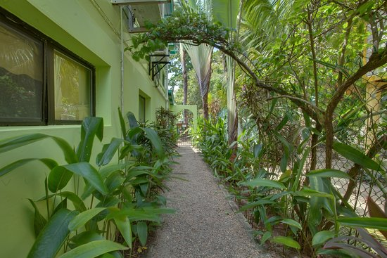 Casa Placencia Belize: Private walkway to two bedroom/two bath apt
