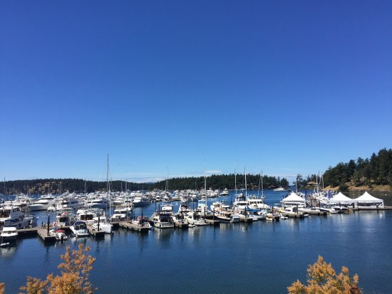 Roche Harbor, WA: photo1.jpg