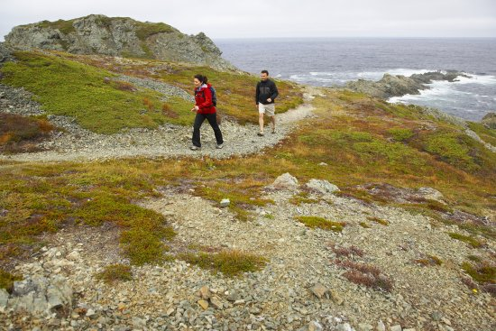 Discover the hidden gems of the coastal trail in Twillingate, Newfoundland & Labrador