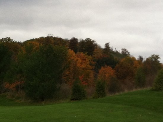 Cedar, Мичиган: photo2.jpg
