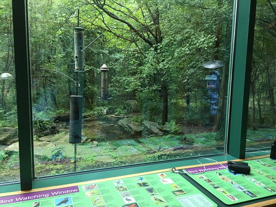 Mississippi Museum of Natural Science : photo1.jpg