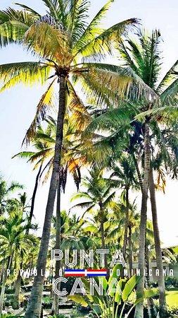 Paradisus Vacation