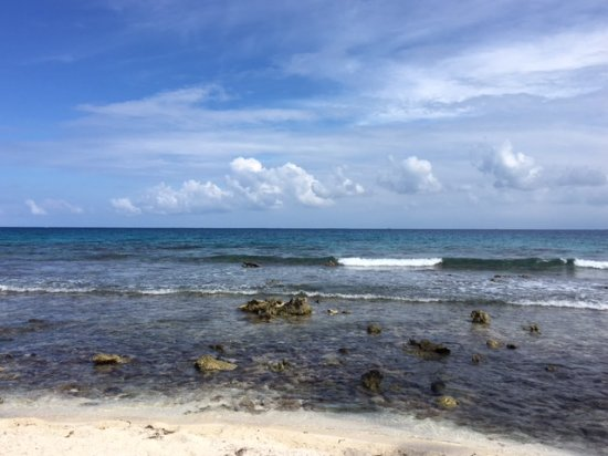 Goff's Caye: View from shore