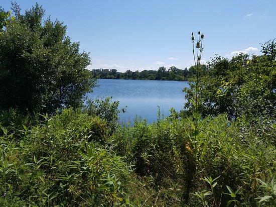 Grayslake, IL: Lake Carina