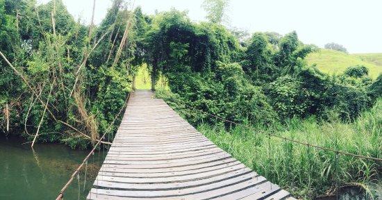Rancho el paraiso de ayotoxco desde m xico for Jardin xochicalli