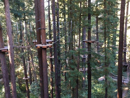 Mount Hermon, Californien: photo6.jpg