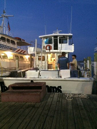 Olin Marler Fishing and Dolphin Cruises
