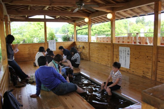 Yoro Keikoku Station Foot Bath