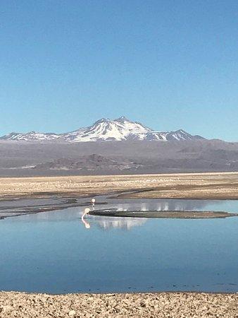 Atacama-Wüste: Deserto do Atacama