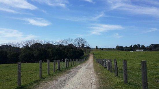 Ewingsdale, Australia: IMG-20170730-WA0011_large.jpg
