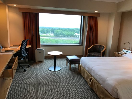 Hilton Tokyo Narita Airport Hotel: 窓から正面に滑走路が、飛行の離発着を見る事できます