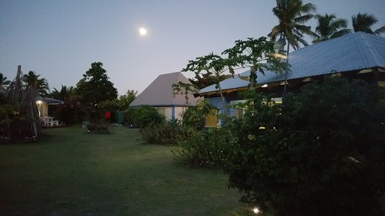 MacDonalds Nananu Beach Cottages: beautifully maintained grounds