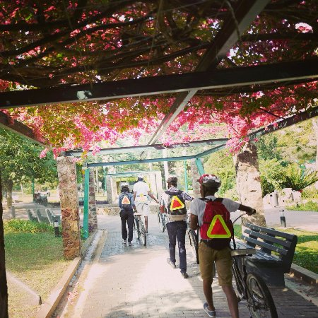 Bike & Saddle Trips