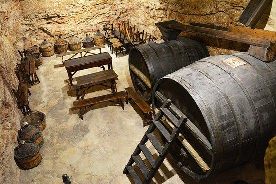 La Cantina Frrud - Museo del Vino