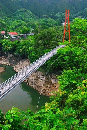 Kobayashi, Japan: 大吊橋1