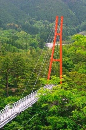 Kobayashi, Japan: 大吊橋2