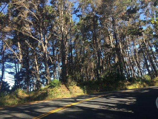 Jenner, Kalifornia: Fort Ross 2