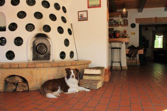 Abbázia Country Club: Az étterem bejárati része a kandallóval