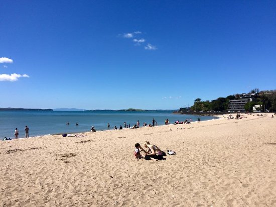 Enjoying the Wonderful Mission Bay Beach - Tamaki Drive.