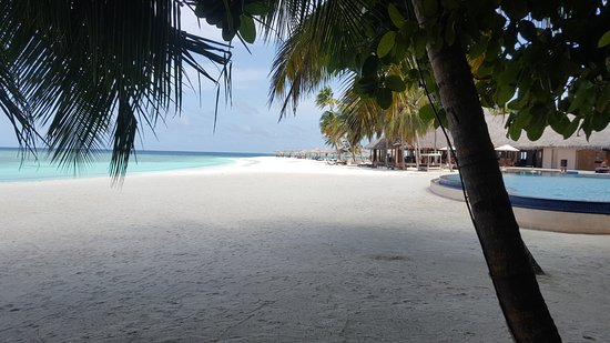 Veligandu Island Resort & Spa: Strand-Pool