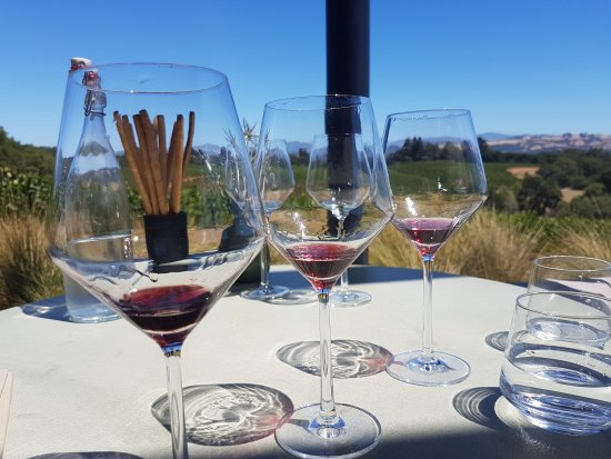 Healdsburg, CA: Vertical Pinot Noir tasting