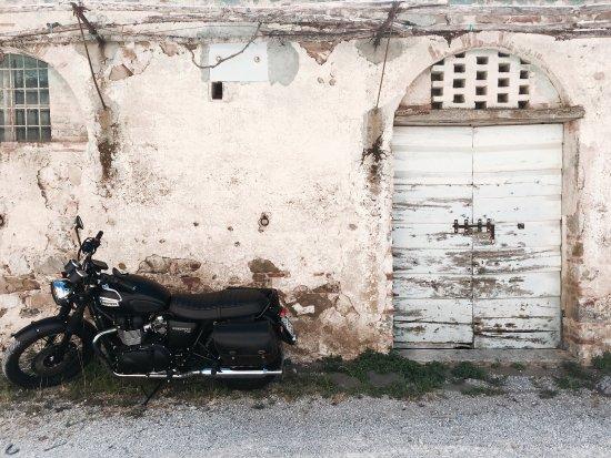 La Casaccia Guelfi: photo1.jpg