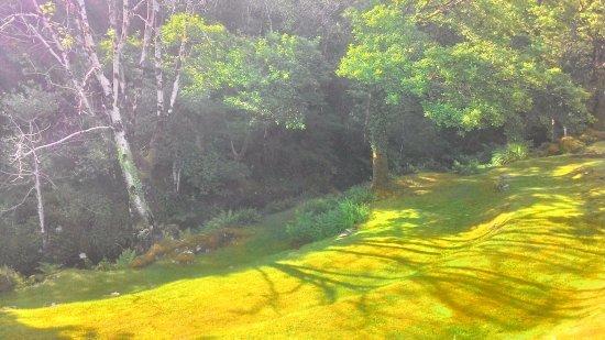 Nonaim Lodge Angling & Accommodation: Le terrain