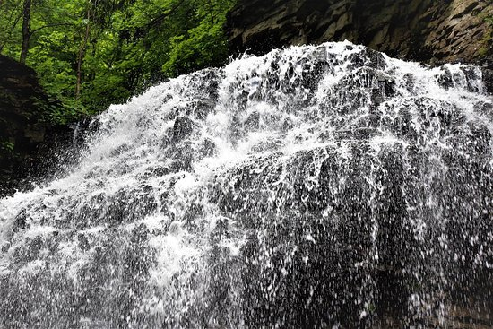 Tiffany Falls Conservation Area: refreshing