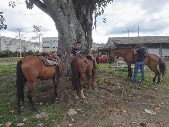 Medellin Turistica - Promotores de Turismo