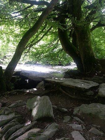 Bilde fra Exmoor National Park